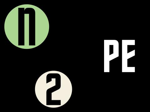N2PE Logo